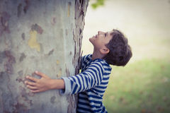 Boy hugging tree trunk in park. Smiling boy hugging tree trunk in park Royalty Free Stock Images