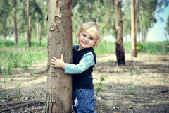 Boy Hugs eucalyptus tree Stock Photo