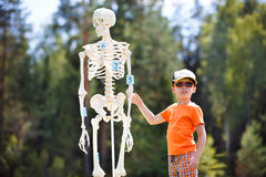 Boy with human skeleton. Cute little boy with human skeleton stock photography