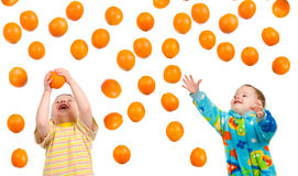 Boy hunts for orange Royalty Free Stock Photos