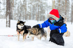 Boy with husky dog Royalty Free Stock Images