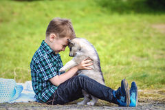 The boy with husky puppy stock image