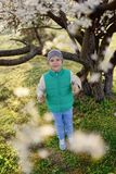 Boy In A Flowering Garden Royalty Free Stock Photo