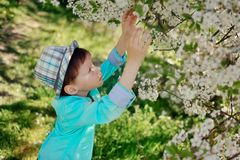 Boy In A Lush Garden Royalty Free Stock Image