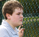 Boy In Fence Stock Photography