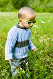 Boy In Nature Royalty Free Stock Photo