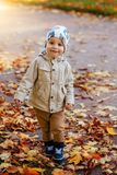 Boy In The Park In Autumn Stock Images