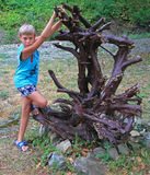 Boy with interesting dry tree Royalty Free Stock Images