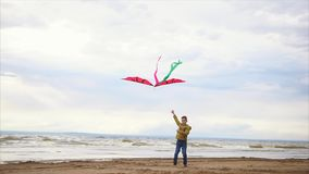 Boy in jacket playing with kite on the beach. Windy cold weather and waves stock video