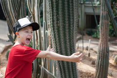 Boy jokingly hugging cactus and screams. Royalty Free Stock Photos
