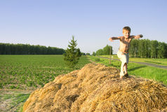 Boy jump on a hayrick and throw a straw Stock Photo