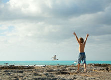 Boy jumping for joy. Young boy on the seashore running toward the birds and with his hands raised on. Photo taken in Nassau Bahamas Royalty Free Stock Photos