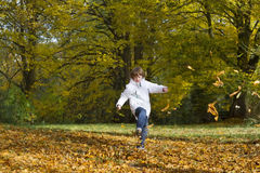 Boy jumping and playing with golden autumn leaves Royalty Free Stock Photography