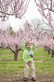 Boy jumping in Spring Royalty Free Stock Image