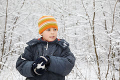 Boy keeps in hands snowball in wood in winter Royalty Free Stock Photo