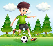 A boy kicking the ball near the pine trees Stock Photos
