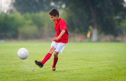 Free Boy Kicking Soccer Ball Stock Image - 85338451