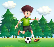 A boy kicking a soccer ball near the pine trees Royalty Free Stock Image