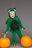 Boy kid child dragon costume pumpkins Halloween Royalty Free Stock Photos