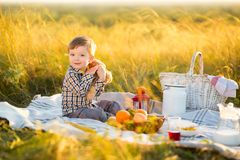 Boy kid with Teddy bear and fruit on a picnic in sunny day Stock Image