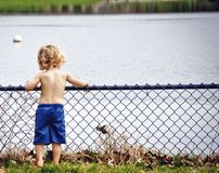 Boy, Kid, Young, Water, Watching Stock Image