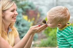 Young mother and young son holding a small duckling.A boy kisses the duck. royalty free stock image