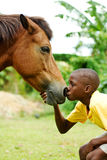 Boy kissing horse Royalty Free Stock Image