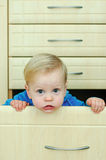 Boy in the kitchen cabinet Royalty Free Stock Image
