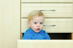 Boy in the kitchen cabinet Royalty Free Stock Photography