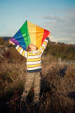 Boy with kite. Fun in park Royalty Free Stock Images