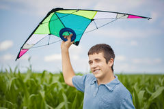 Boy with kite on a corn field Royalty Free Stock Photo