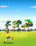 Boy and kite Stock Image