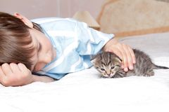 Boy with kitten at home Royalty Free Stock Image