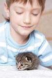 Boy with kitten at home Stock Photos