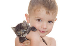 Boy with a kitten. Portrait of a beautiful little boy with a kitten in her arms Stock Photos