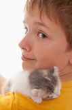 Boy and kitten Stock Photo