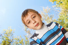 Boy in knit clothing Stock Images