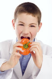 Boy in lab smock eating a pepper. Boy / young man opening his mouth to take a bite of a bright orange pepper.  The youth is wearing a lab smock and nice shirt Royalty Free Stock Photos