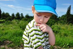 Boy with ladybug Stock Image