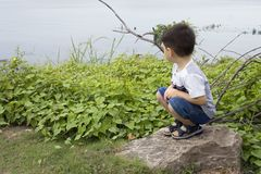 Boy at the Lake Royalty Free Stock Images