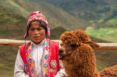 Boy with Lama Royalty Free Stock Photo