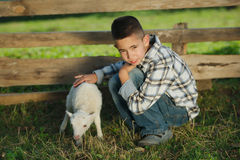 Boy with lamb on the farm Royalty Free Stock Photo