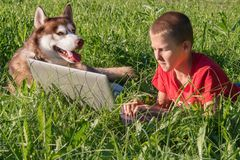 Boy with laptop and husky dog on green lawn. Child and red Siberian husky lie side by side on the grass. stock photo