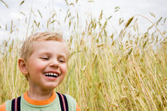 Boy laughing on wheat field Royalty Free Stock Photos