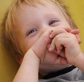 Boy laughs cheerfully Stock Images