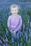 Boy at lavender field Royalty Free Stock Images