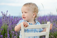 Boy  in lavender summer field Royalty Free Stock Photo
