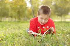 Boy laying on grass and reading Stock Images