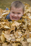 Boy laying in leaves Stock Photography
