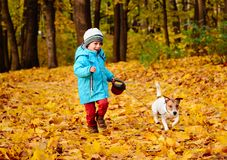 Little boy walks nicely his pet dog on leash at beautiful fall park Royalty Free Stock Photography